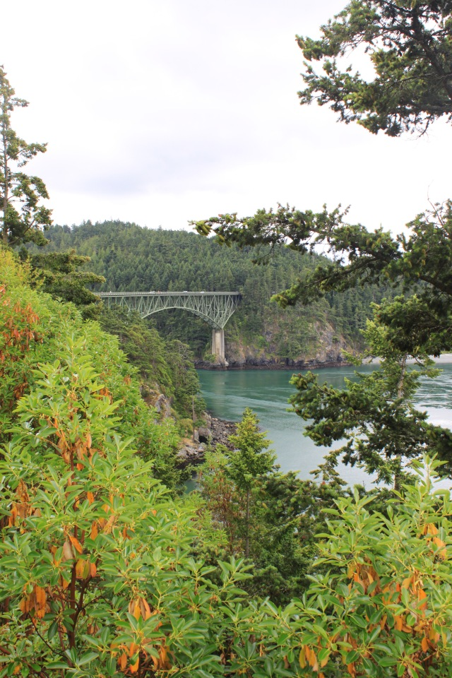 Deception Pass June (5) PS