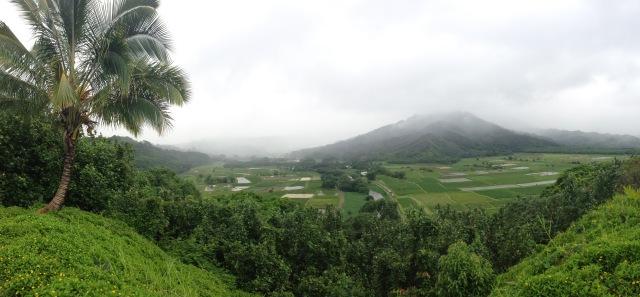 Kauai, Hawaii (27)