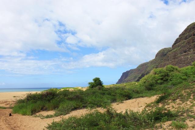 Kauai, Hawaii (3)