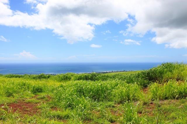 Kauai, Hawaii (7)