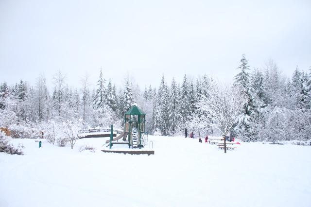 snow-day-9
